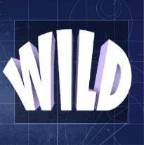 wild symbol slotsfans